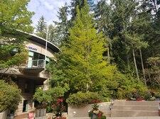 CISS North Vancouver University Ванкувер