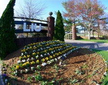 Pre – master's program Long Island University (LIU)